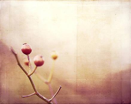 Carolyn Cochrane - Allure