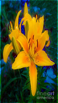 Omaste Witkowski - Alluring Yellow Lilies In An Abstract Garden by Omaste WItkowski