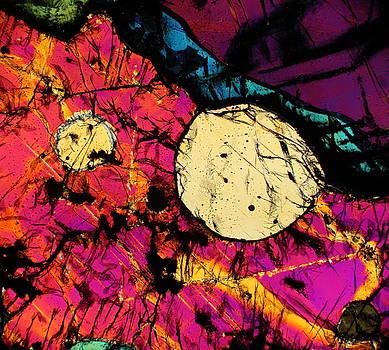 Alma Matter by Hodges Jeffery