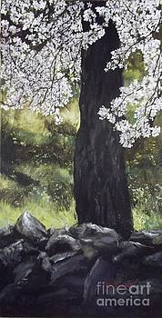 Almond Tree in Spring by Lizzy Forrester