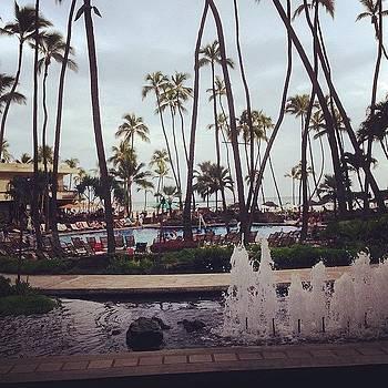 Aloha! by Dan Mason