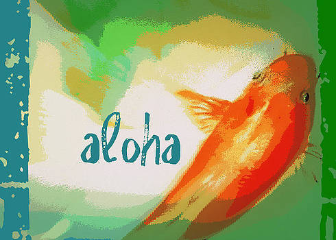 Aloha Koi by Wendy Wiese