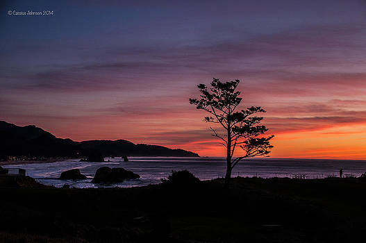 Alone at Sunset by Cassius Johnson