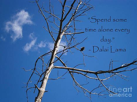 Alone by Drew Shourd