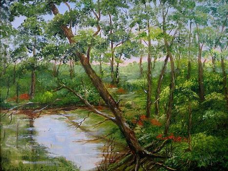 Along Arkansas Hwy by Martha Efurd