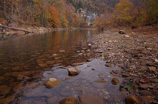 Along the Autumn Stream by Renee Hardison