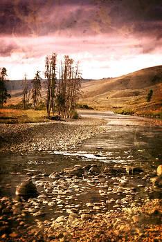Marty Koch - Along the Larmar River 2