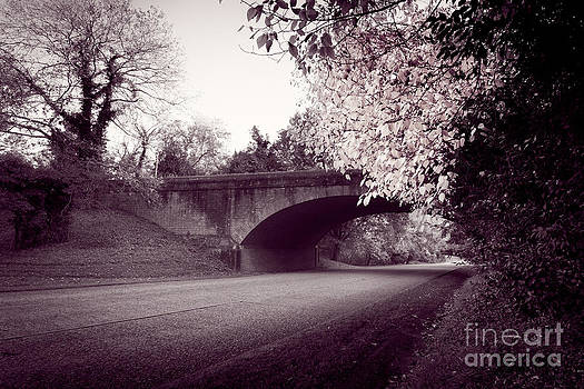 Lisa McStamp - Along the Parkway