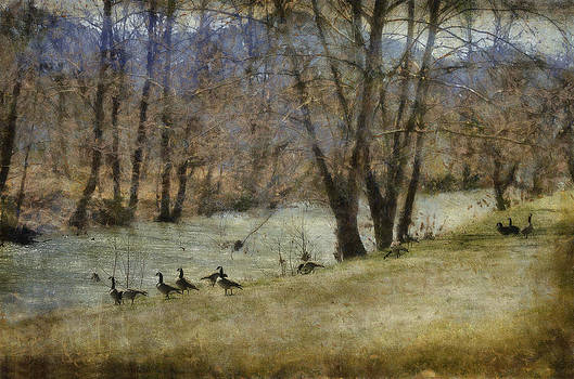 Along The River by Kathy Jennings