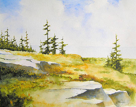 Along the Superior Hiking Trail by William Beaupre