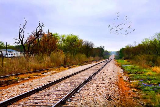Along the Tracks by Joan Bertucci
