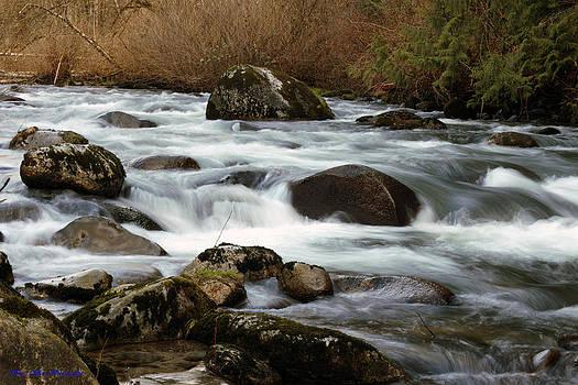 Alouette River by Ed Nicholles