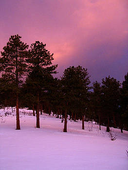 Sherlyn Morefield Gregg - Alpenglow Color Madness