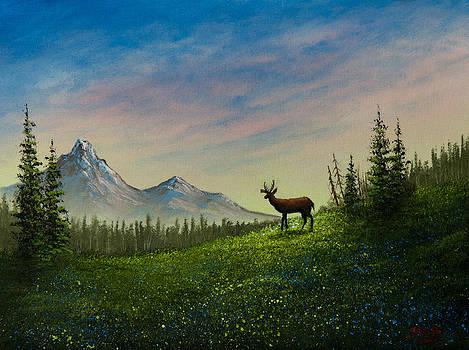 Chris Steele - Alpine Beauty