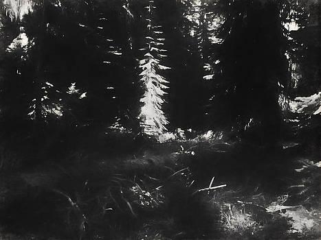 Boyd Miller - Alpine Forest