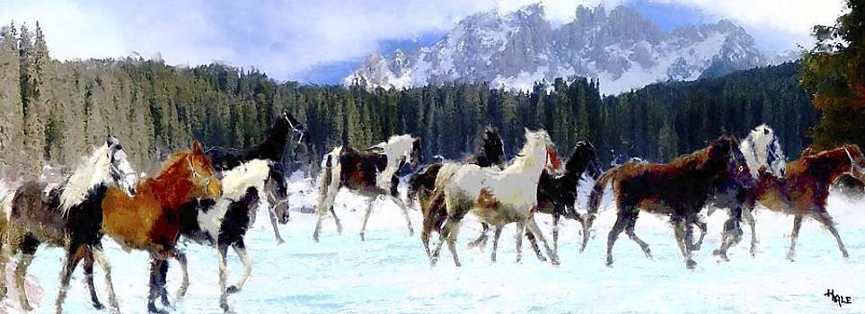 Roger D Hale - Alpine Ponies