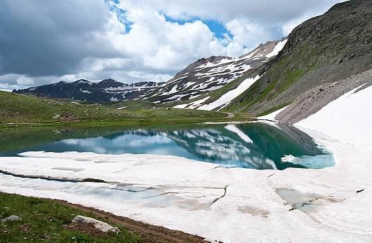 Alpine Summer Beauty by Cascade Colors
