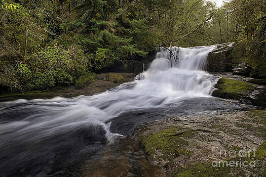 Tim Moore - Alsea Falls