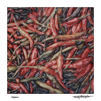 Altered Polaroid - Chile Peppers by Wally Hampton