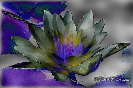 Altered Water Lily by Terri K Designs