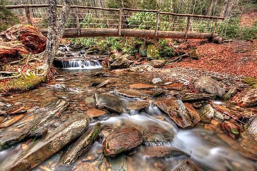 Alum Cave Trail Bridge by Doug McPherson