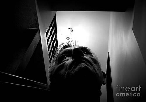 Always Look Upwards by Steven Macanka