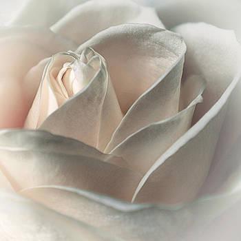Always n Forever by Darlene Kwiatkowski