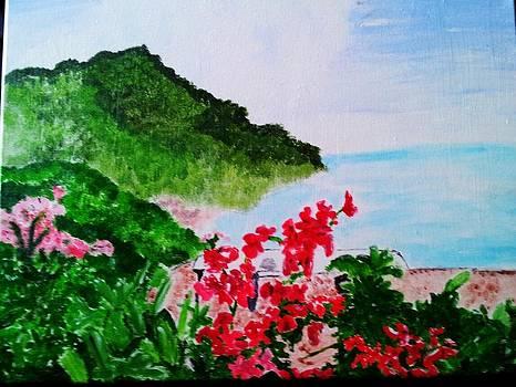 Amalfi by Brandon Galinis