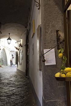 Amalfi Walkway by Denise Rafkind