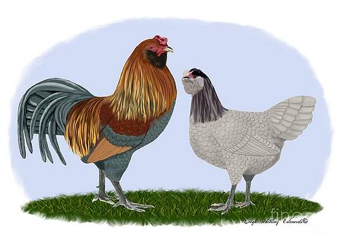 Amaraucana Rooster and Hen by Leigh Schilling