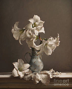 Larry Preston - Amaryllis in a French Chocolate Pot
