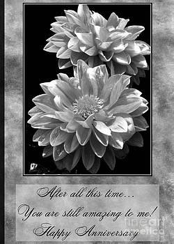 JH Designs - Amazing Anniversary Flowers