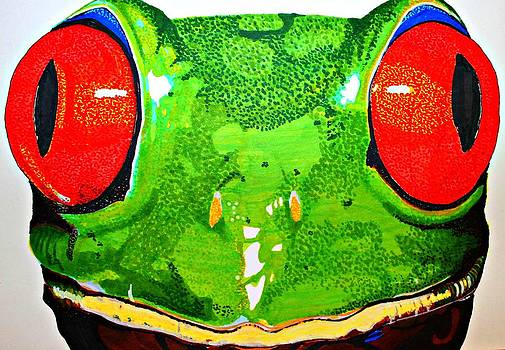Amazon Tree Frog by Michael Runner