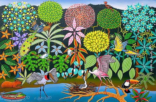 Amazonia Brasileira by Militao Dos Santos Militao