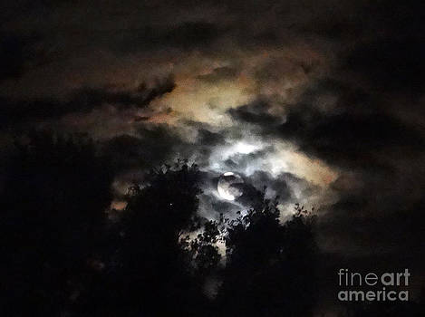 Amber Sky Moonscape by Ecinja Art Works