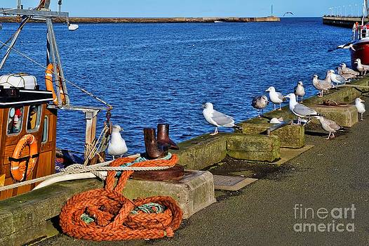 Amble Quayside by Les Bell