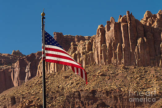 The flag of the United States of America by Juergen Klust