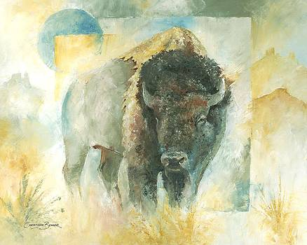American Bison Buffalo Bull by Christiaan Bekker