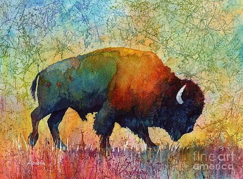 Hailey E Herrera - American Buffalo 4
