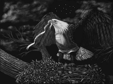 Heather Ward - American Eagle