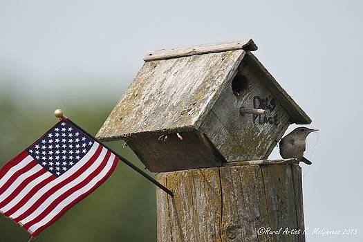 American Home Builder by Kim McGinness