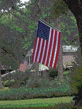 American Pride by Annette Allman