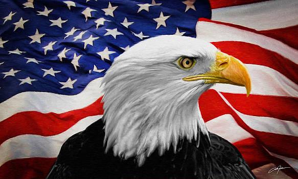 Dale Jackson - American Symbols