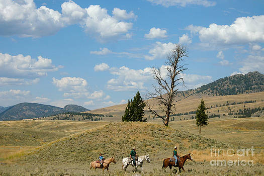 American West Horseback by Denise Lilly