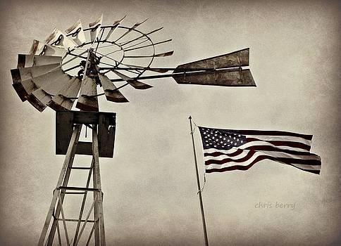 Chris Berry - Americana