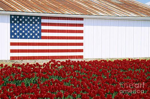 Americana by Kari Marttila