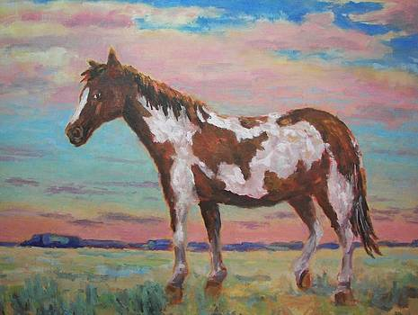 Americana Paint Horse by Robert Stump