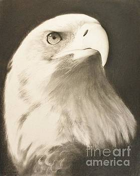 Americas Finest by Adrian Pickett