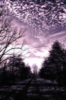 Amethyst Dream by Heather Bridenstine
