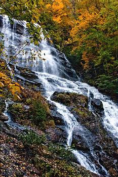 Amicalola Falls by Gerald Adams